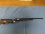 Savage Arms  17 WSM